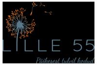 Lille55_logo_varviline_200x135